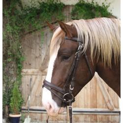 KERBL Ogłowie dla koni zimnokrwistych